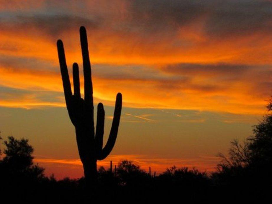 Sukkot 2014 Sunset