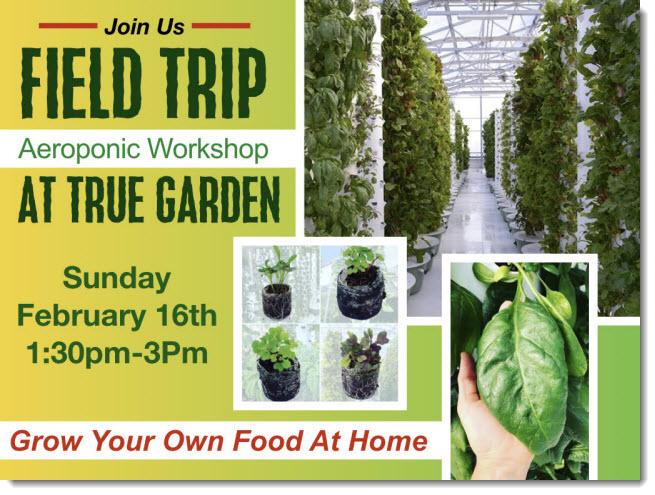 Aeroponic Workshop at True Garden
